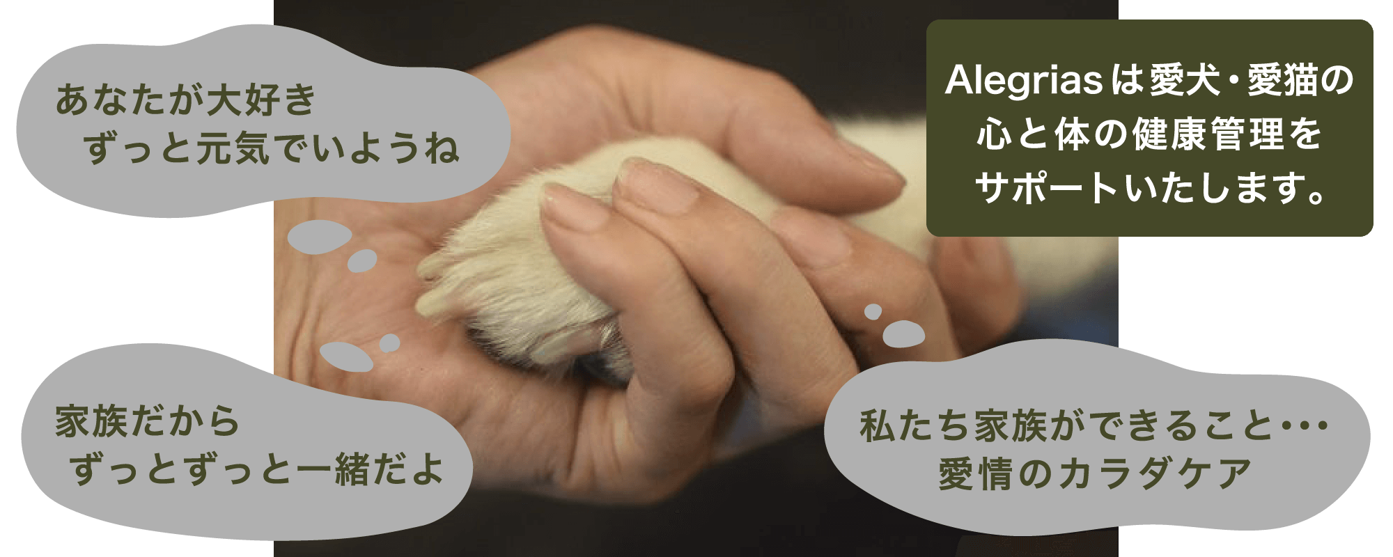 Alegriasは愛犬・愛猫の心と体の健康管理をサポートいたします。